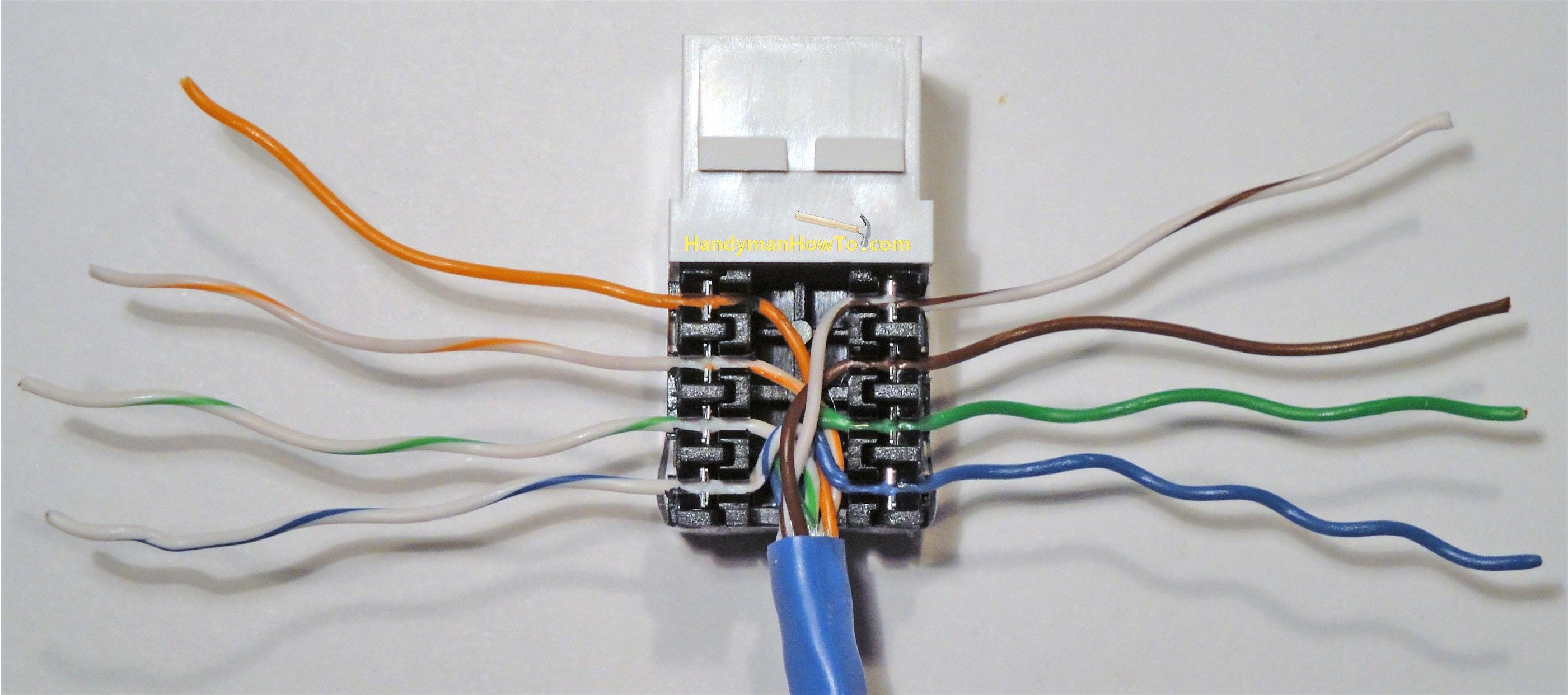 master socket wiring diagram on cat 5 wiring diagram for wall plate rh metroagua co