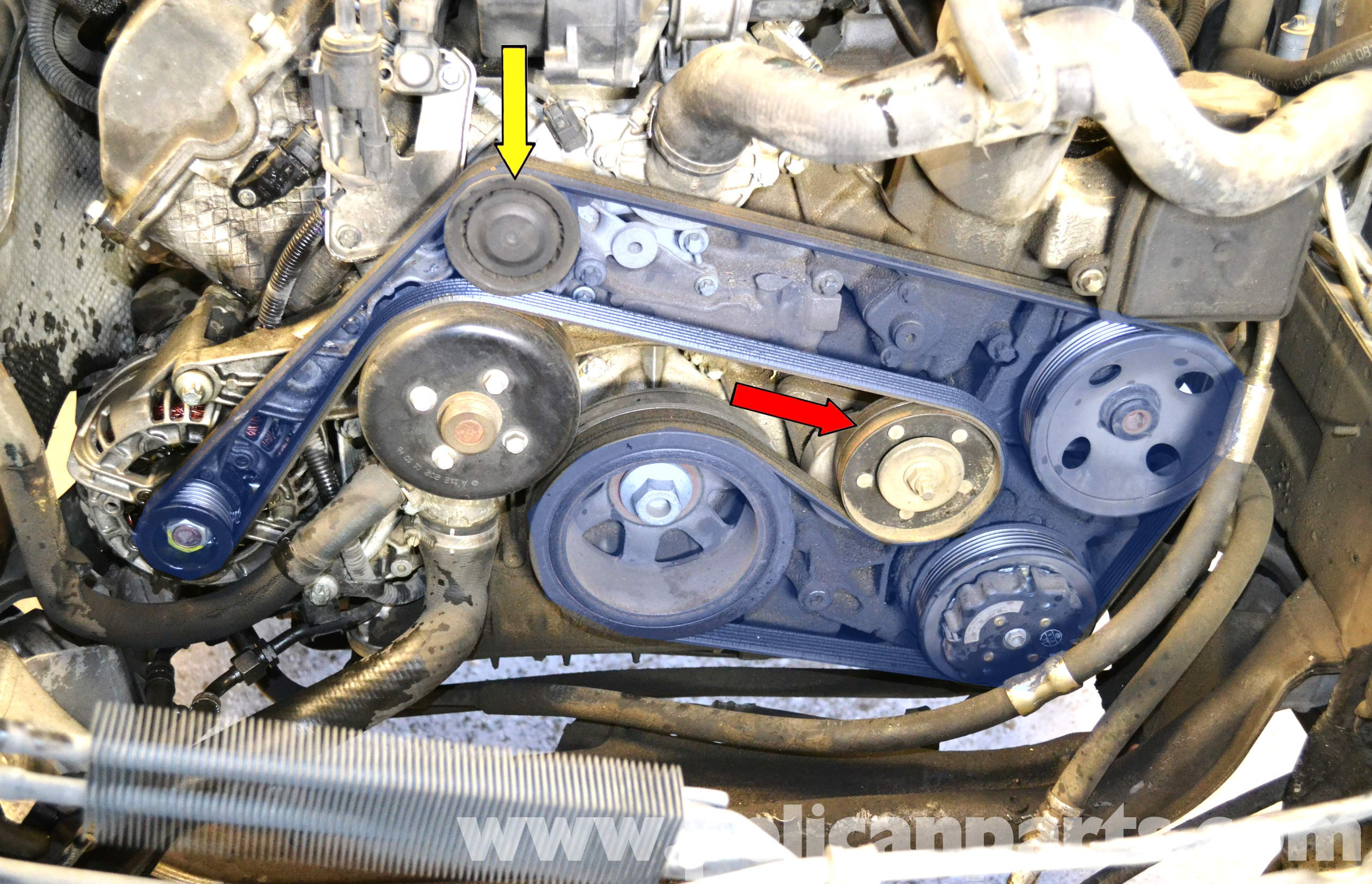 Mercedes S430 Engine Diagram Mercedes Benz W203 Water Pump Replacement 2001 2007 C230 C280 Of Mercedes S430 Engine Diagram