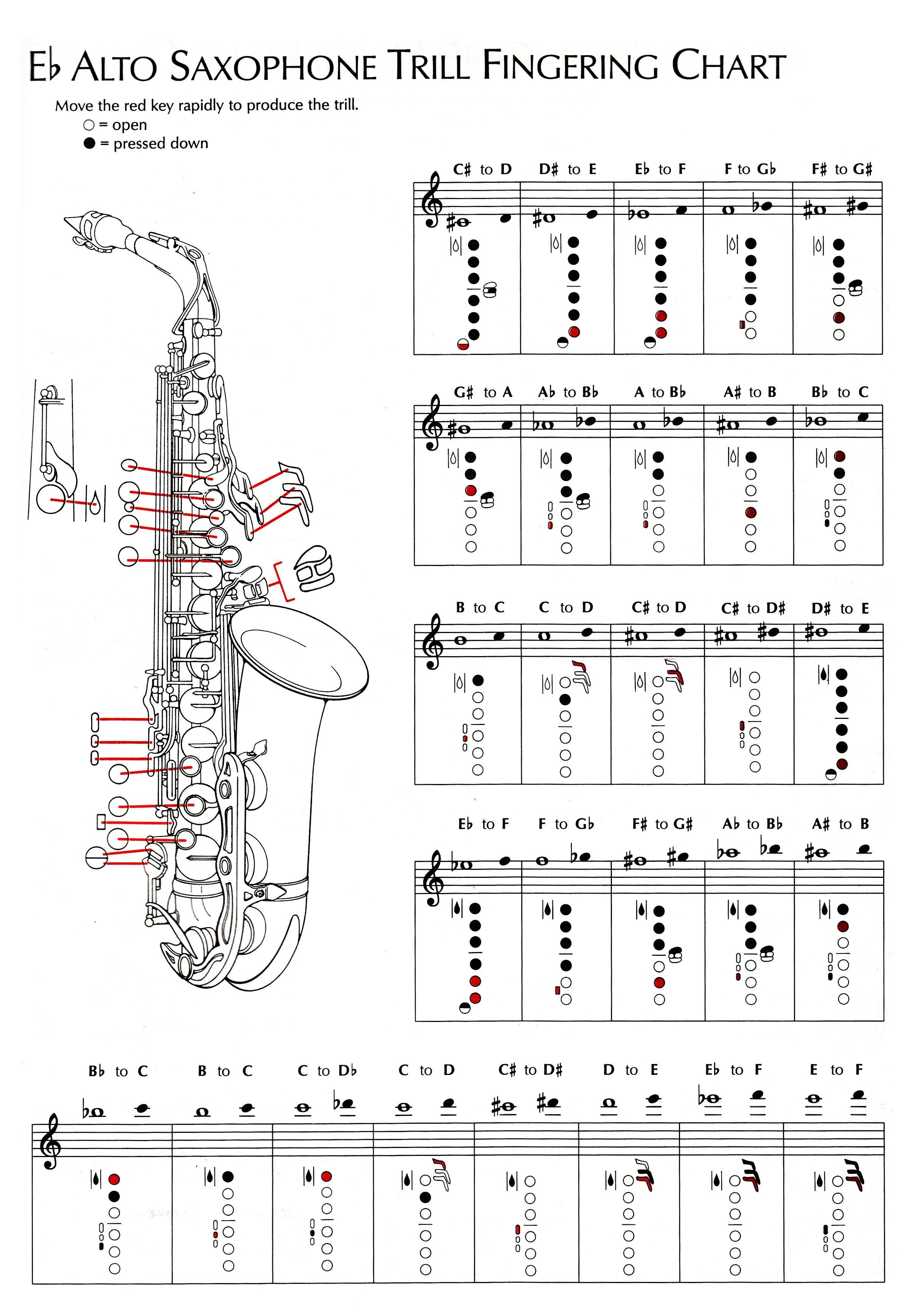 Alto Saxophone Parts Diagram Alto Saxophone Keys Chart Instrument Fingering B Charts B