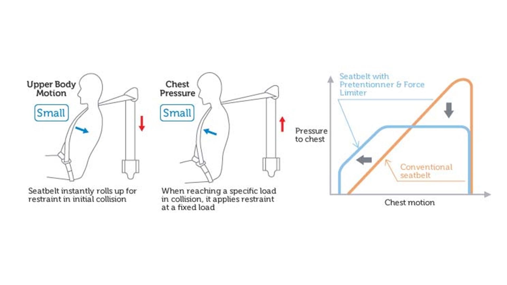 Seat Belt Diagram Unbuckled Rear Seat Passengers Face High