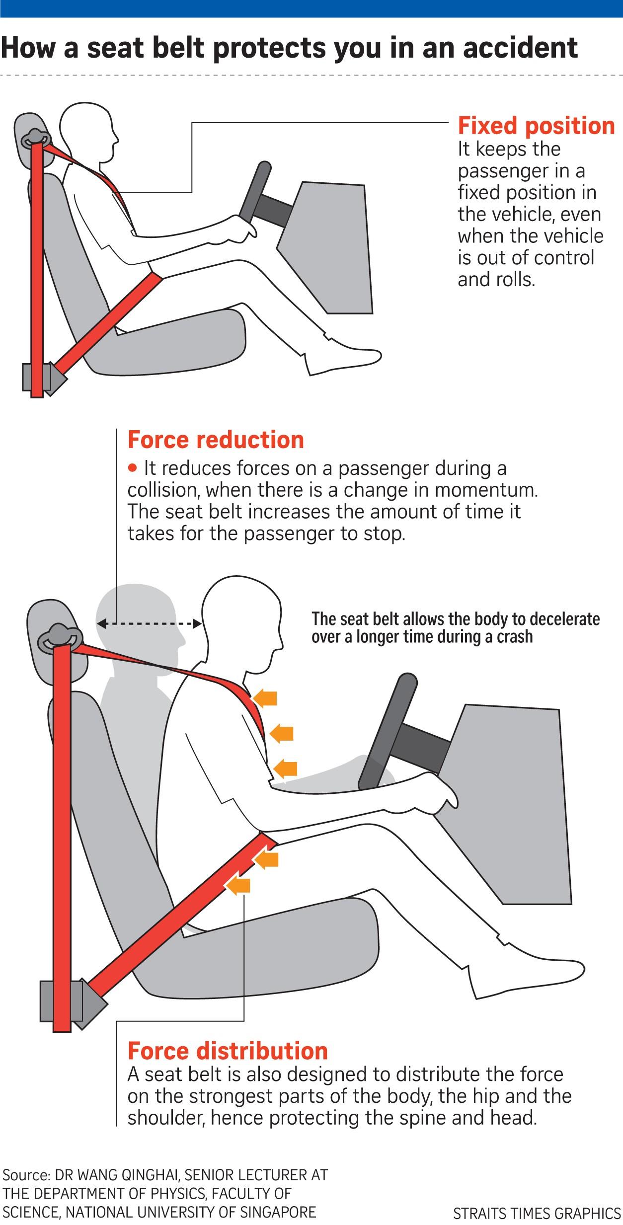 Seat Belt Diagram