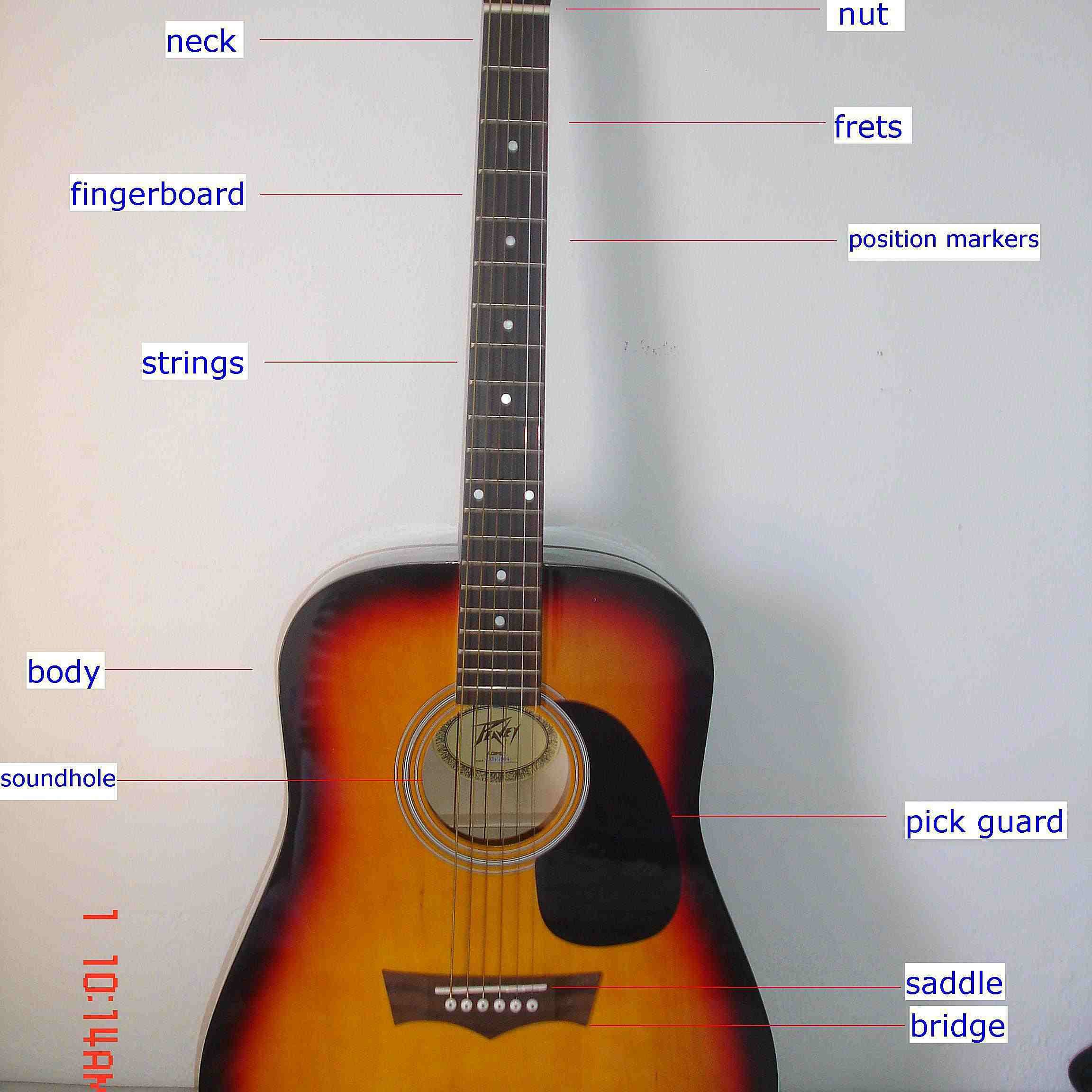 Acoustic Guitar Parts Diagram the Parts Of An Acoustic Guitar