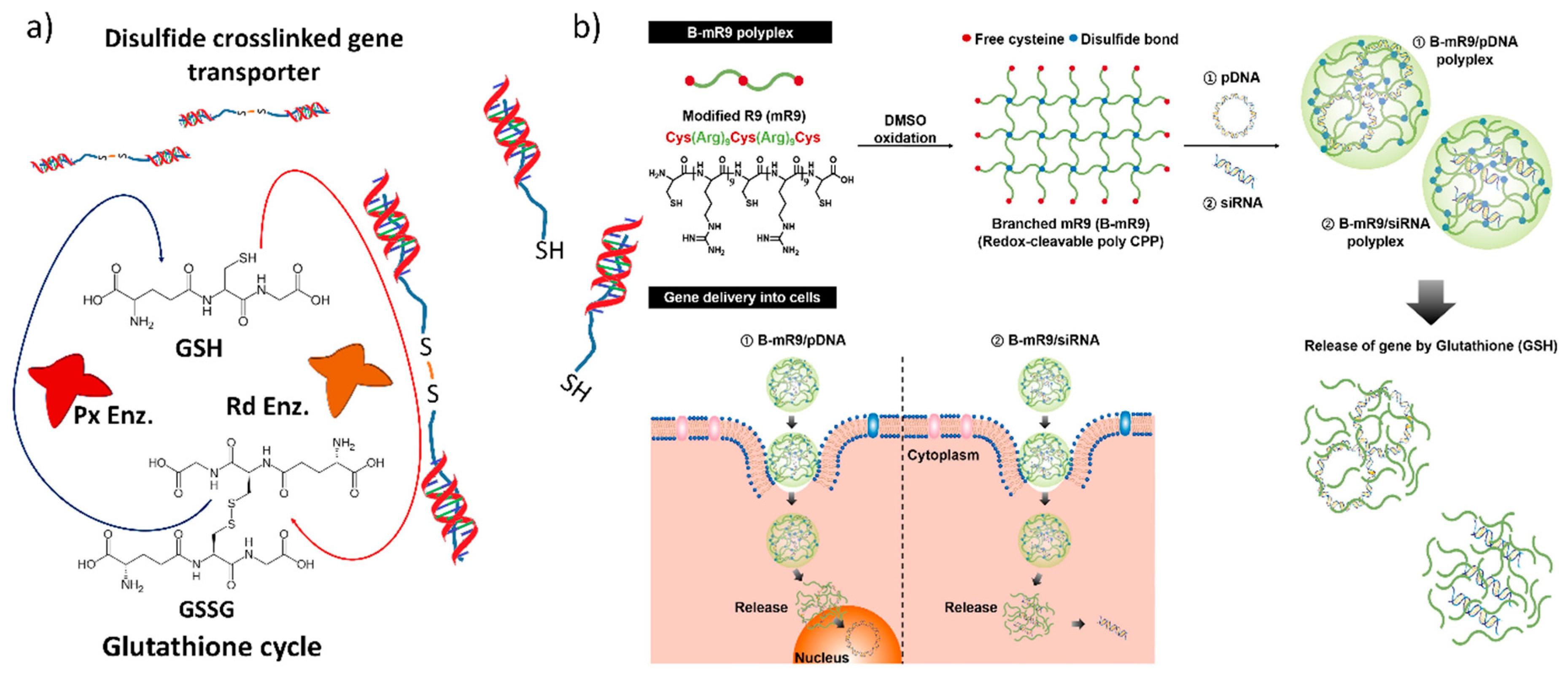 Wiring Diagram for Snorkel S1930 Jlo6251 Nanomaterials Free Full Text Of Wiring Diagram for Snorkel S1930 Jlo6251
