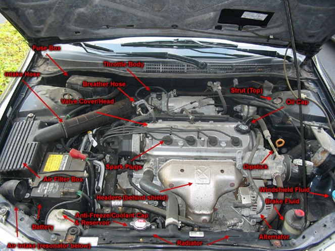 Underneath Car Layout Beginner's Guide to Body Parts Under the Hood Your Car Of Underneath Car Layout