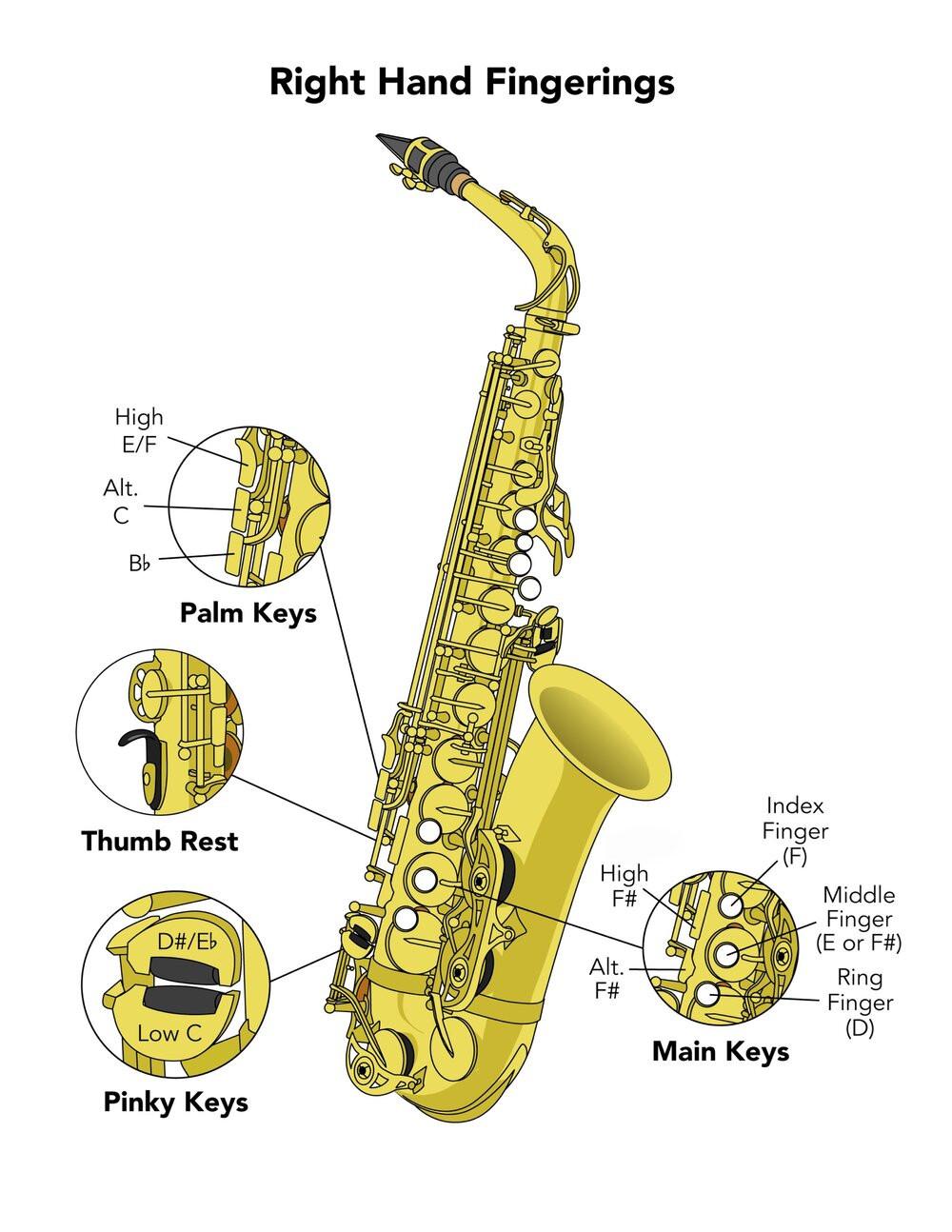 Saxophone Fingering Charts Saxophone Fingering Chart Ken Moran Online Saxophone Lessons … Of Saxophone Fingering Charts